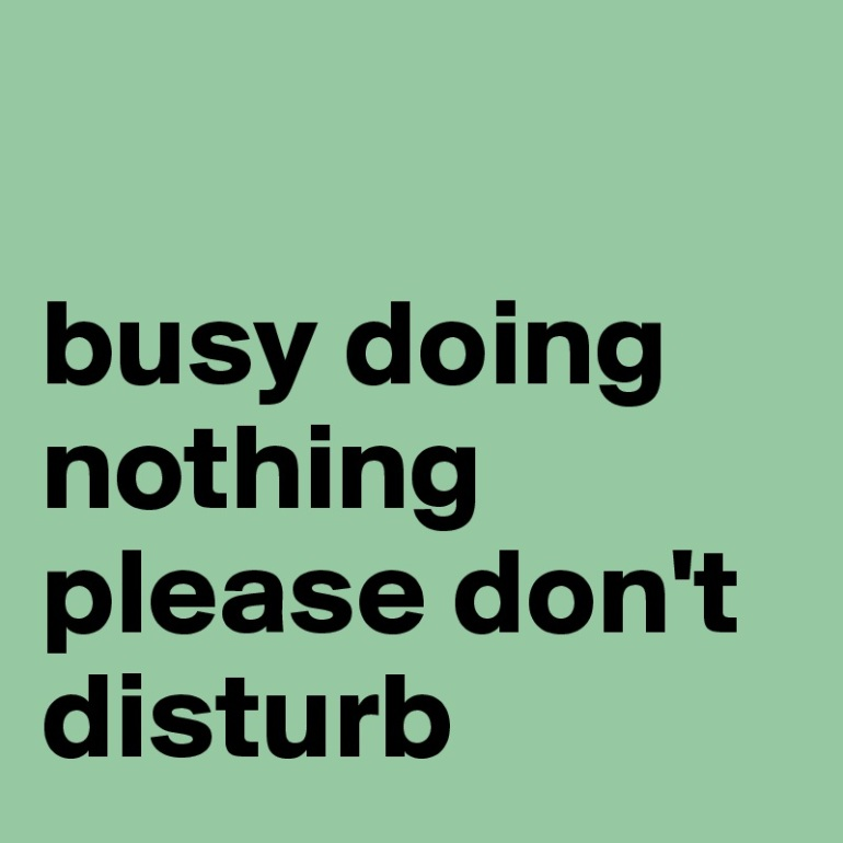 busy-doing-nothing-please-don-t-disturb.jpg